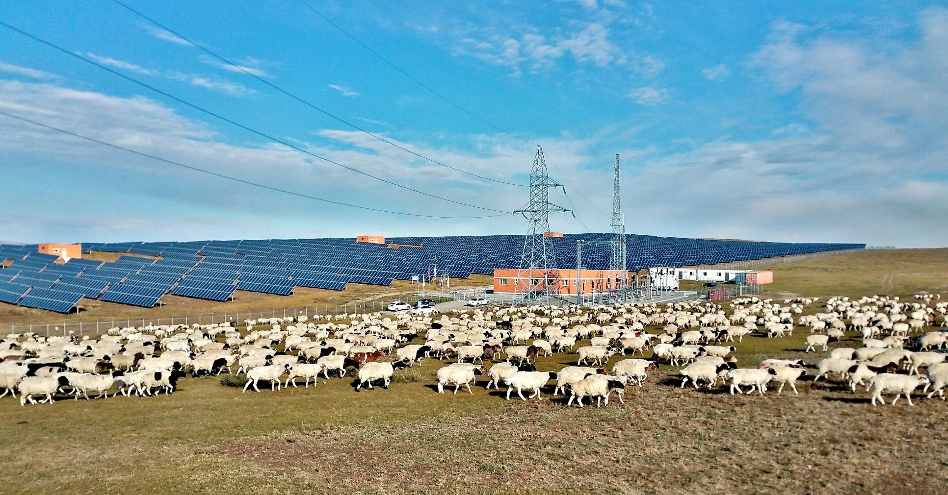 モンゴル国における太陽光発電事業